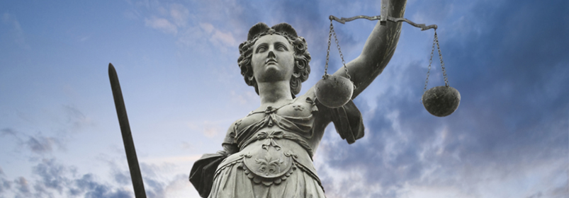 Nieman Juridisch Advies